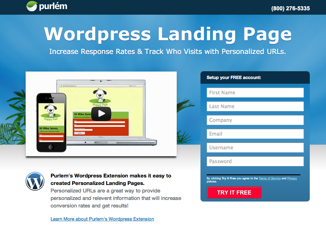 Landing-Page-Wordpress.png